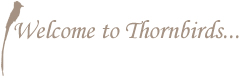 Thornbirds conference and wedding centre